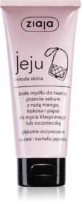 Ziaja Jeju Young Skin Cleaning Soap for Face