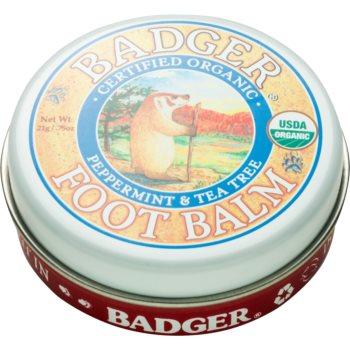 Badger Balm balsam de hidratare profundă pentru pielea uscată și crăpată imagine 2021 notino.ro
