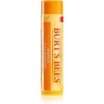 Burt's Bees Lip Care balsam de buze nutritiv imagine 2021 notino.ro