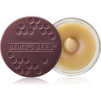 Burt's Bees Lip Scrub Exfoliant pentru buze cu efect de nutritiv imagine 2021 notino.ro