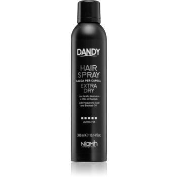 DANDY Hair Spray fixativ cu fixare puternică cu acid hialuronic imagine 2021 notino.ro