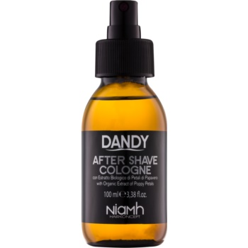 DANDY After Shave after shave imagine 2021 notino.ro