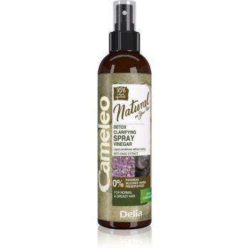 Delia Cosmetics Cameleo Natural conditioner Spray Leave-in imagine 2021 notino.ro
