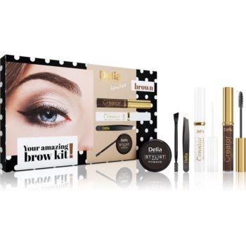 Delia Cosmetics Eyebrow Expert Brown set cadou V. (pentru sprancene) pentru femei notino.ro