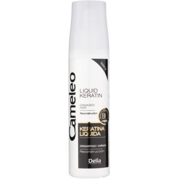 Delia Cosmetics Cameleo BB Keratină lichidă spray pentru par deteriorat imagine 2021 notino.ro