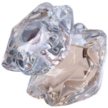 Montblanc Lady Emblem Eau de Parfum pentru femei image0