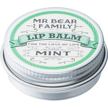 Mr Bear Family Mint balsam de buze pentru barbati notino.ro