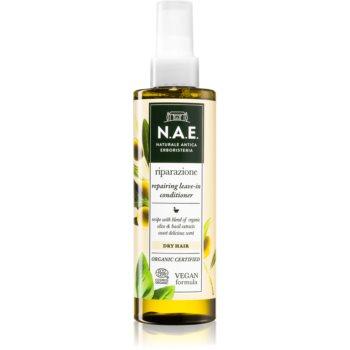 N.A.E. Riparazione balsam sub forma de spray pentru par uscat imagine 2021 notino.ro