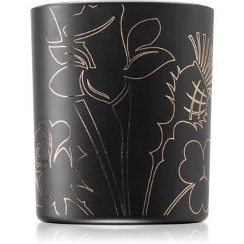 Noble Isle Tea Rose lumânare parfumată imagine 2021 notino.ro