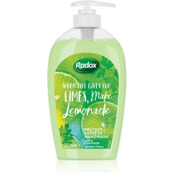 Radox When Life Gives You Limes, Make Lemonade Săpun lichid pentru mâini imagine 2021 notino.ro