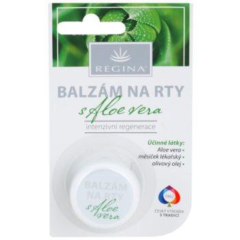 Regina Aloe Vera Balsam de buze hidratant cu aloe vera notino.ro