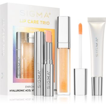 Sigma Beauty Lip Care Trio set de cosmetice (de buze) imagine 2021 notino.ro