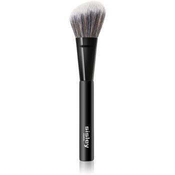 Sisley Accessories Phyto-Lip Delight pensula pentru aplicare fard obraz imagine 2021 notino.ro