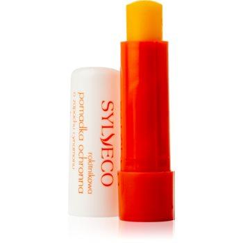 Sylveco Lip Care balsam protector efect regenerator image0