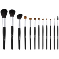 BrushArt Face Cosmetic Set II. for Women
