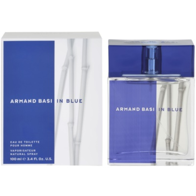 Armand BasiIn Blue