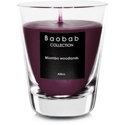 Baobab Miombo Woodlands bougie parfumée (votive)