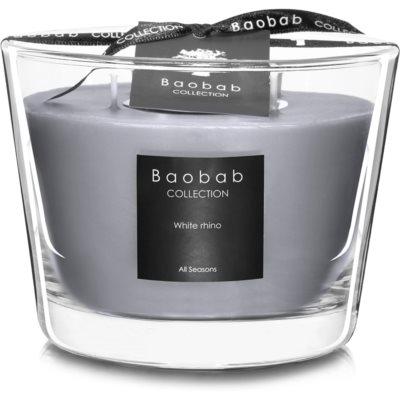BaobabWhite Rhino