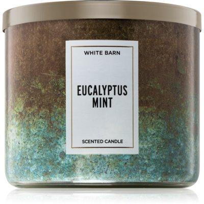 Bath & Body WorksEucalyptus Mint