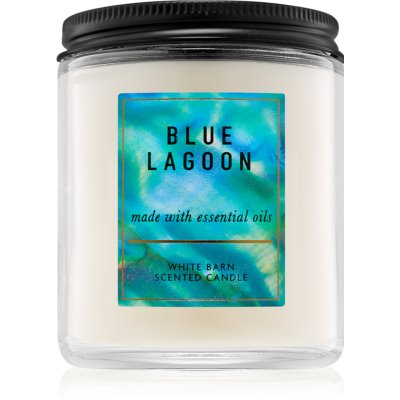 Bath & Body WorksBlue Lagoon