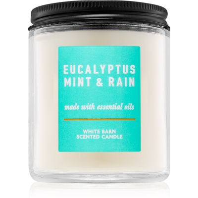 Bath & Body WorksEucalyptus Mint & Rain