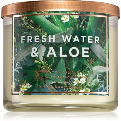 Bath & Body WorksFresh Water & Aloe