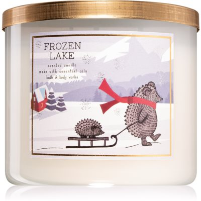 Bath & Body Works Frozen Lake vela perfumada