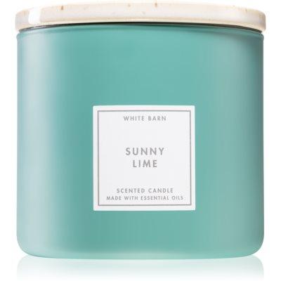 Bath & Body WorksSunny Lime