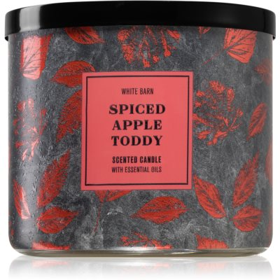 Bath & Body WorksSpiced Apple Toddy