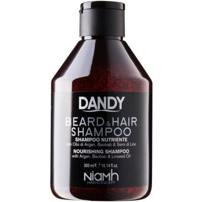 DANDYBeard & Hair Shampoo