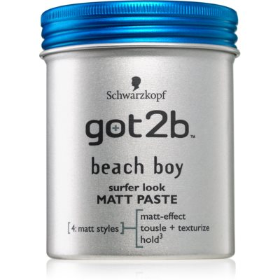 got2bBeach Boy