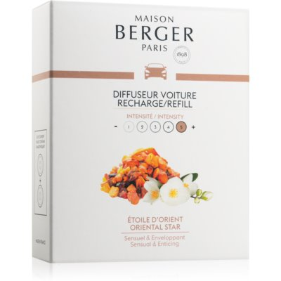 Maison Berger ParisCar Oriental Star