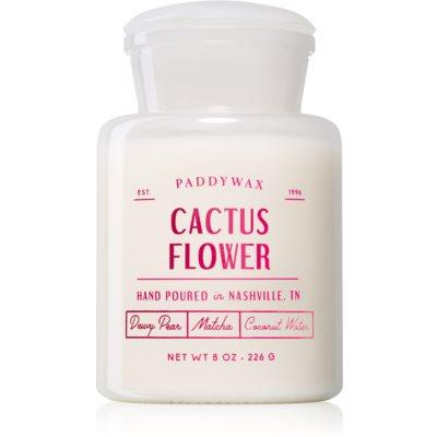 PaddywaxFarmhouse Cactus Flower