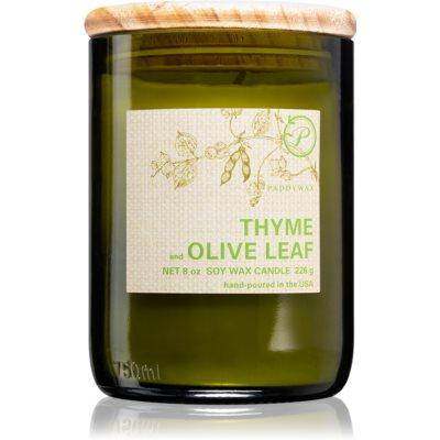 PaddywaxEco Green Thyme & Olive Leaf