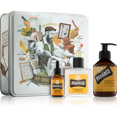 Proraso Wood and Spice Cosmetic Set I. (for Men) for Men
