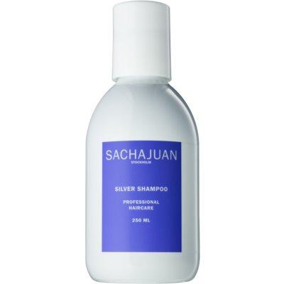 SachajuanSilver